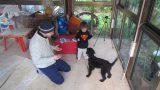 nir-28-01-2012-008