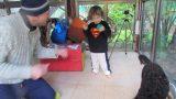 nir-28-01-2012-010